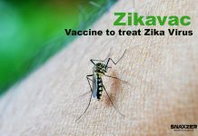 Zikavac: Vaccine to treat Zika Virus