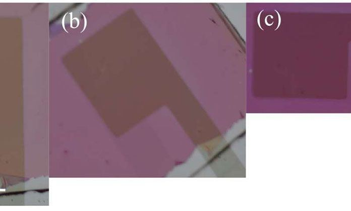 Researchers Cultivate New Device to Measure Polarization of Light