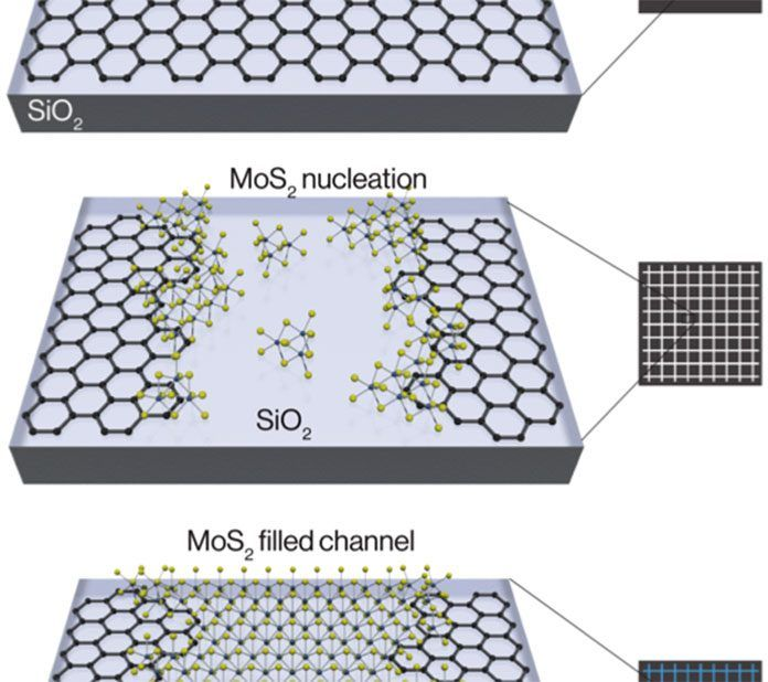 Scientists Grow Atomically Thin Transistors and Circuits