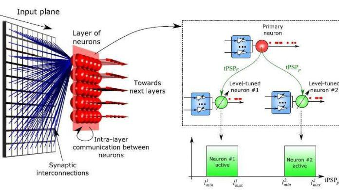 Neuromorphic Computing Mimics Important Brain Feature