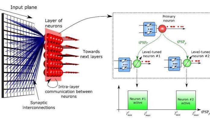 Neuromorphic Computing Mimics Important Brain Feature