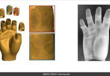 3D Hand Model