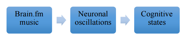 Brain.fm music influences cognitive states by entraining neuronal oscillations.