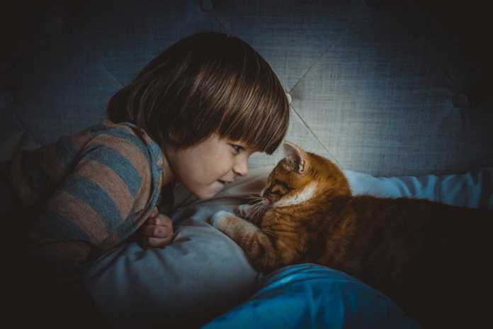 Kids Get More Satisfication From Household Pets Than Their Siblings
