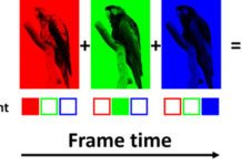 Blue-Phase Liquid Crystal Could Triple Sharpness Of Today's Televisions