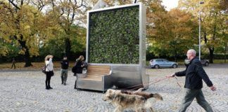 Mobile CityTree Installations Use Moss to Clean Air in Urban Areas