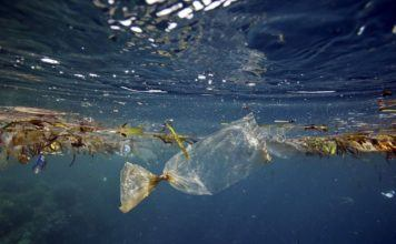 Study Finds Most Ocean Pollution Comes From Asian Rivers