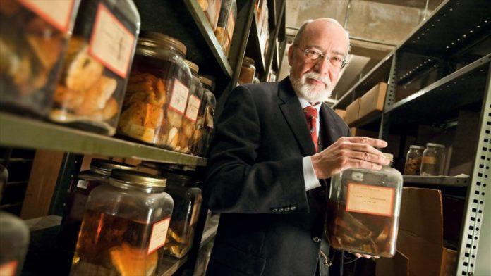 Brain Science: Finding Secrets in Century-Old Brains
