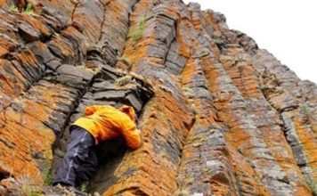 Study Bolsters Volcanic Theory of Ancient Permian Extinction