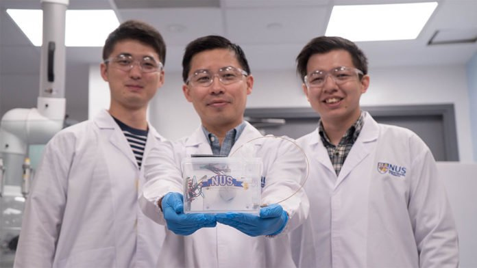 An Artificial Photosynthesis Device to Produce Ethylene Gas