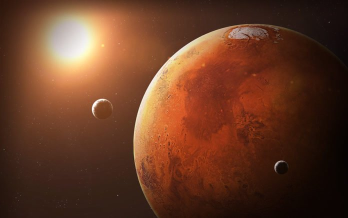 How Long can Microorganisms Live on Mars