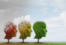 Higher Education Linked to Lower Alzheimer Risk