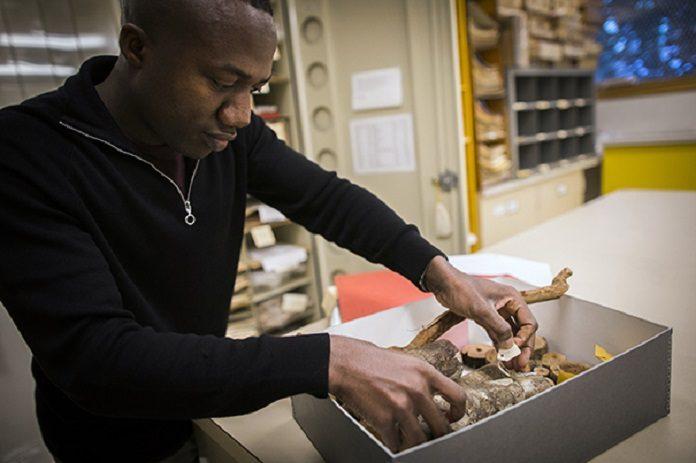 Study Uncovers Botanical Bias