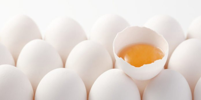 Feeding Eggs to Infants could Improve Biomarkers Related to Brain Development