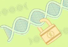 How Privacy Policies Affect Genetic Testing