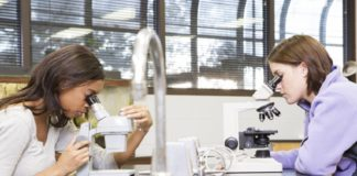 High-stakes tests a likely factor in STEM performance gap