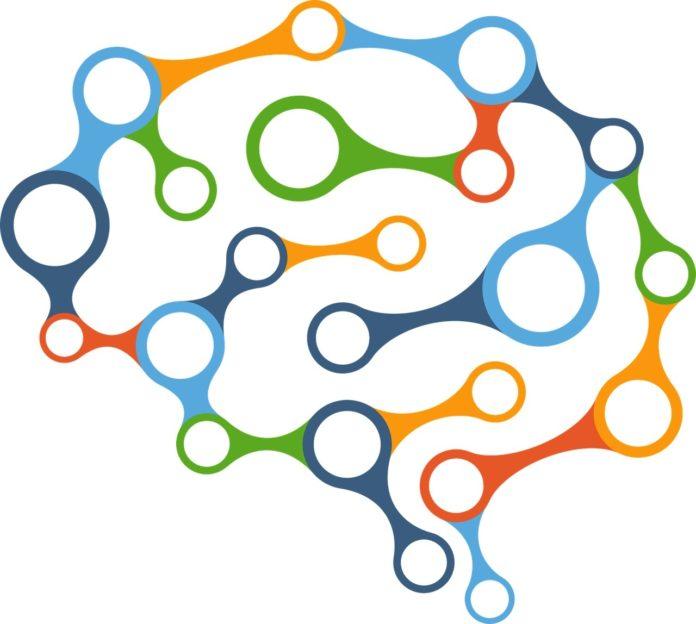 Simple but Powerful Model Reveals Mechanisms Behind Neuron Development
