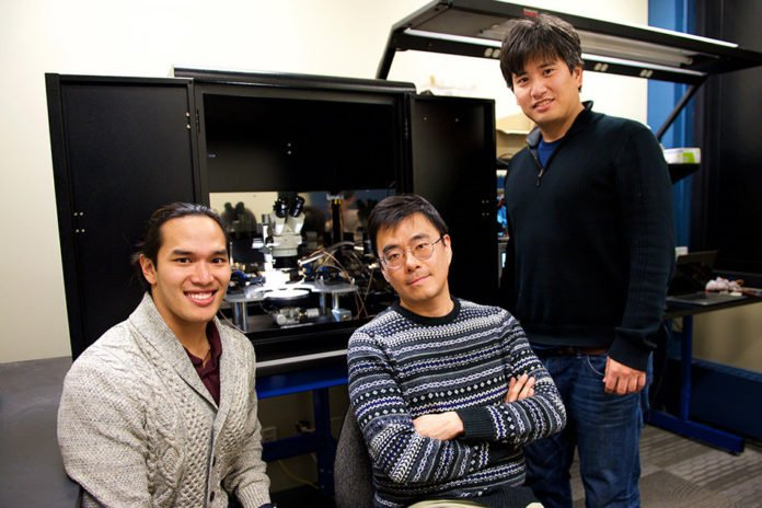 """Artificial synapse for """"brain-on-a-chip"""" hardware"""
