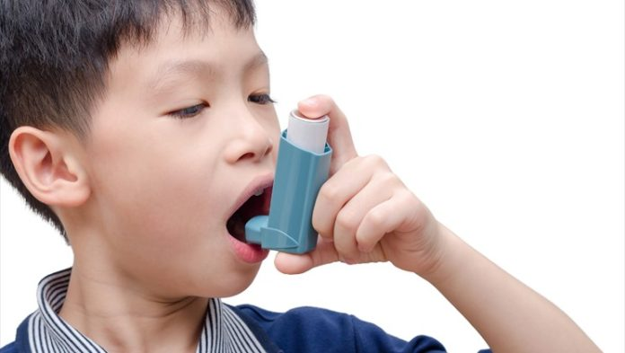 Scientists uncovered Asthma's genetic origins