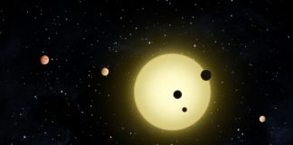 Planets orbiting other stars are like Peas in a Pod