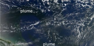 The dissolved organic carbon from the Amazon Rivers spreads into the Atlantic Ocean to be decomposed by solar radiation. The river plume containing terrestrial dissolved organic carbon can be seen as dark regions in the Atlantic Ocean. The picture taken on 30 September 2006 shows that the river plume has extended first about 700 km in the front of Guyana and turned there towards the open ocean