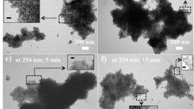 New, self-assembled Hairy nanoparticles could give double punch to cancer