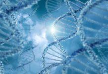 DNA molecules design illustration