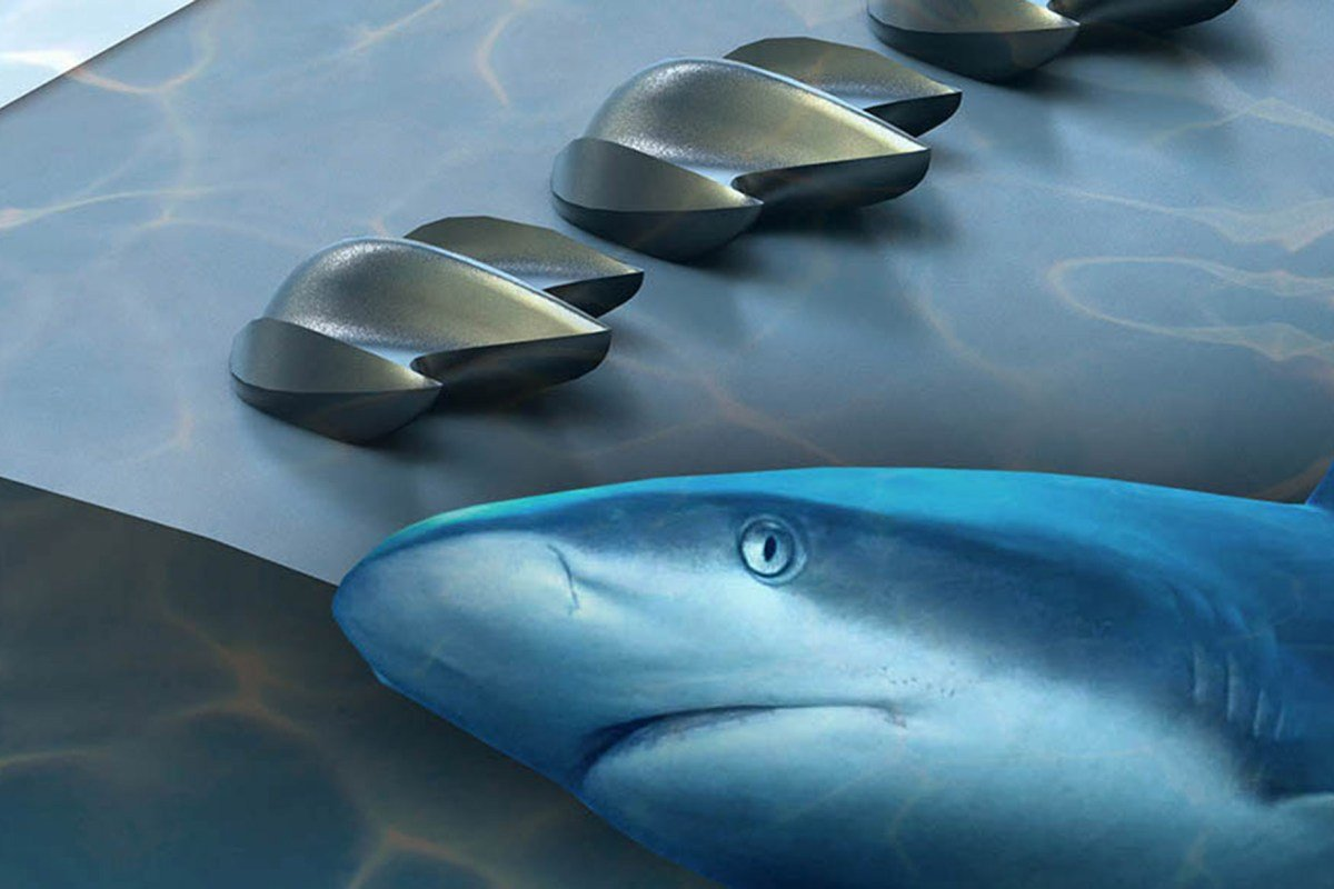Shark scales could inspire better drones, planes and wind turbines