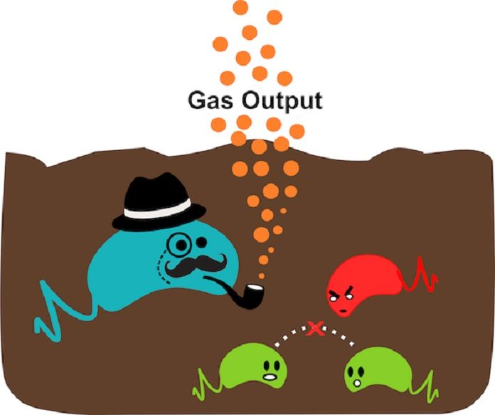 New two-stage gas sensor reports on soil dynamics