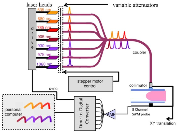 Schematic Diagram for OM Instrument: Seven pulsed lasers sequentially illuminate the compressed breast; transmitted light is detected by the 8-channel SiPM probe and the TDC acquires the signal. Credit: Edoardo Ferocino