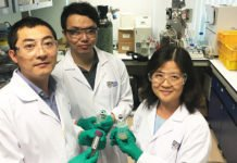 NUS engineers have found that a natural bacterium isolated from mushroom crop residue can contribute to greener and cheaper biofuel production