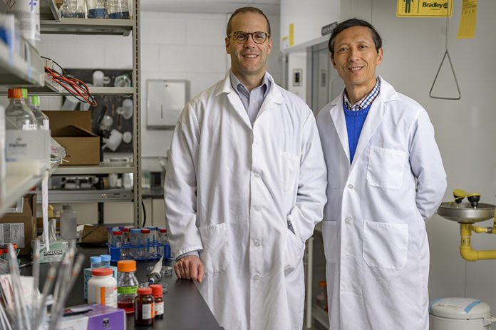 "Purdue University researchers Jean-Christophe ""Chris"" Rochet and Dr. Riyi Shi say their discovery of a key factor in the development of Parkinson's disease could lead to new therapies, potentially including drugs currently on the market; it could facilitate earlier diagnosis and prevention of the neurological disorder. (Purdue University photo/Alex Kumar)"