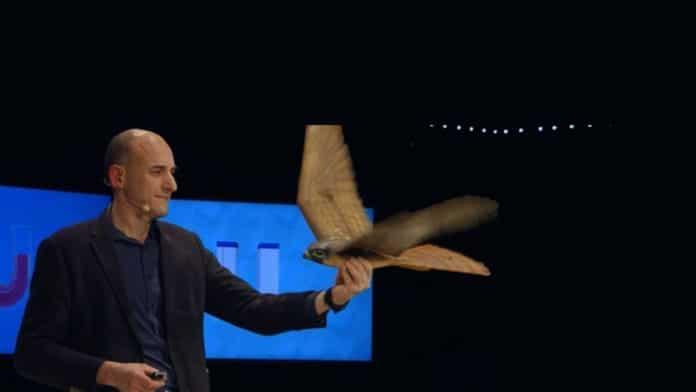 The first robotic birds: Robots flying like birds