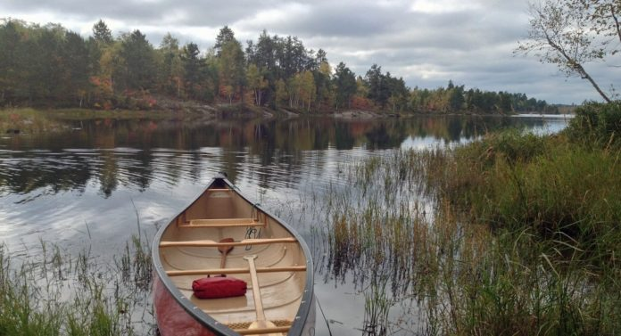 Lake near Sudbury, Ontario, in the Canadian Boreal Shield, with aquatic plants in the foreground providing fuel for methane production.
