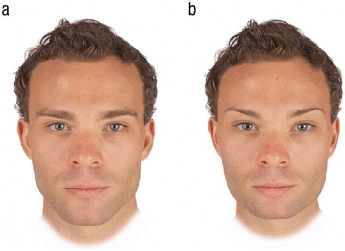 Examples of masculinized (a) and feminized (b) versions of men's faces used to assess facial-masculinity preferences in our study.