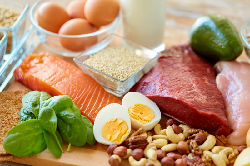 Protein Prevents Food Craving