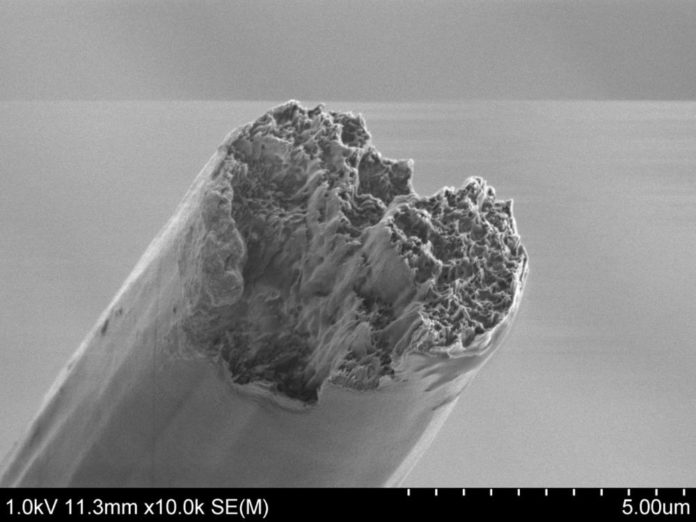 The resulting fibre seen with a scanning electron microscope (SEM). Credit: Nitesh Mittal, KTH Stockholm