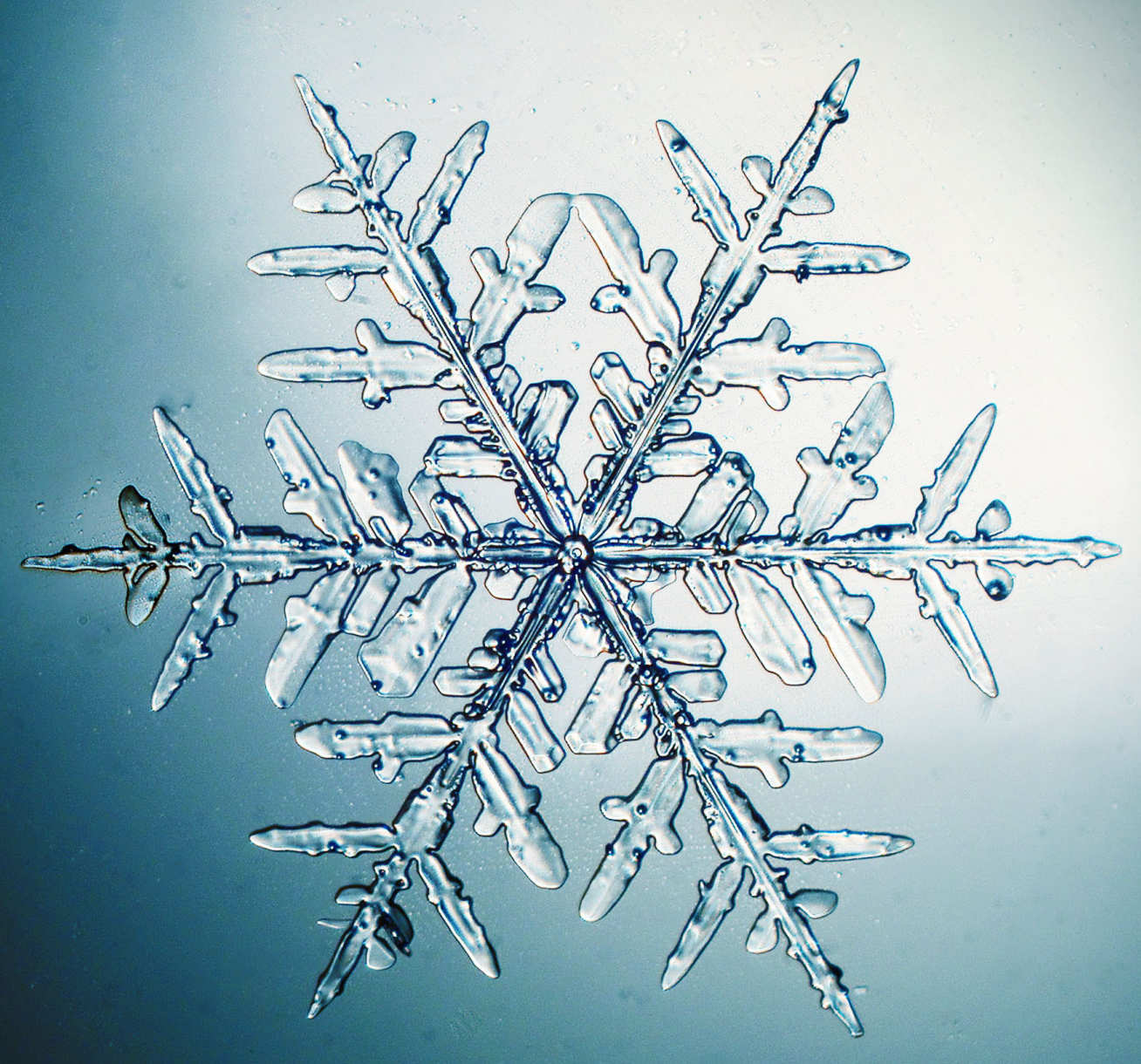 The self-repeating patterns reflect fractals in nature, like in snowflakes or lightning bolts.