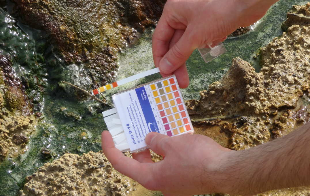 Scientist holding pH scale next to the stream, demonstrating acidity