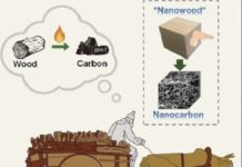nanowood, nanocarbon