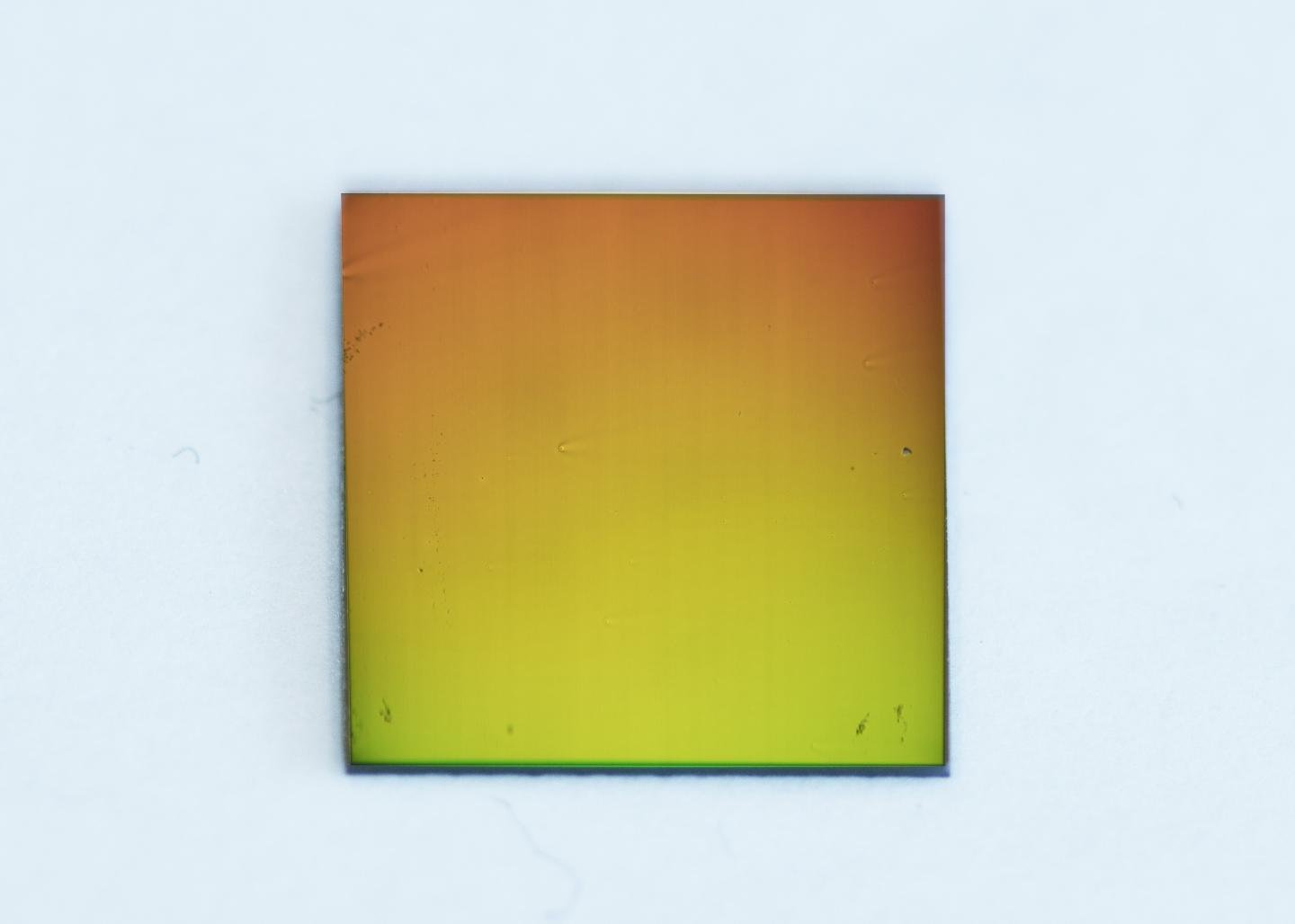 The biosensor (pictured) is a thin glass slide compatible with traditional microscopes. Photo: EPFL