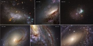 These six images represent the variety of star-forming regions in nearby galaxies. The galaxies are part of the Hubble Space Telescope's Legacy ExtraGalactic UV Survey (LEGUS), the sharpest, most comprehensive ultraviolet-light survey of star-forming galaxies in the nearby universe. The six images consist of two dwarf galaxies (UGC 5340 and UGCA 281) and four large spiral galaxies (NGC 3368, NGC 3627, NGC 6744, and NGC 4258). The images are a blend of ultraviolet light and visible light from Hubble's Wide Field Camera 3 and Advanced Camera for Surveys. Credits: NASA/ESA/LEGUS team