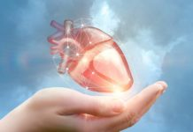 Artificial heart