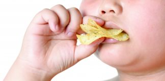 potato chip in obese fat boy hand isolated on white