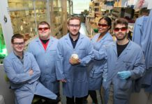 Todd Hyster's research group has found a way to make a naturally occurring enzyme take on a new, artificial role. From left: David Miller, postdoctoral researcher; Kyle Biegasiewicz, postdoctoral researcher; Todd Hyster, assistant professor of chemistry, holding a 3-D printed model of the enzyme; Megan Emmanuel, graduate student; Simon Cooper, graduate student. Photo byC. Todd Reichart, Department of Chemistry