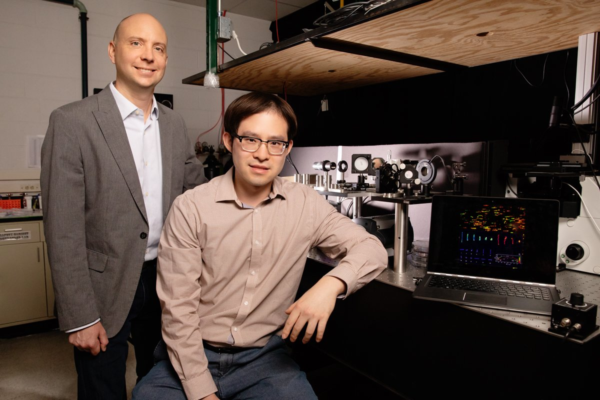 Chemical and biomolecular engineering professor Charles Schroeder, left, and graduate student Peter Zhou have found that single polymers – acting as individuals – work together to give synthetic materials macroscopic properties like viscosity and strength. Photo by L. Brian Stauffer
