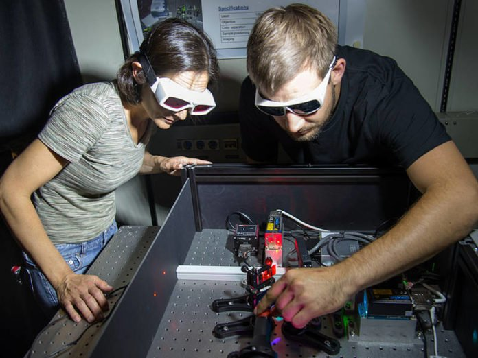 Dr. Zeynep Ökten and co-author Willi L. Stepp at the fluorescence-microscope. (Image: A. Battenberg / TUM)