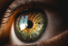 Human eye close up