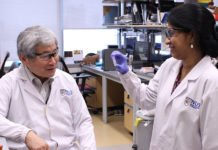 A research team from the Cancer Science Institute of Singapore at the National University of Singapore, led by Professor Yoshiaki Ito (left), and involving Senior Research Scientist Dr Vaidehi Krishnan (right), has discovered that RUNX proteins play a part in the regulation of DNA repair.