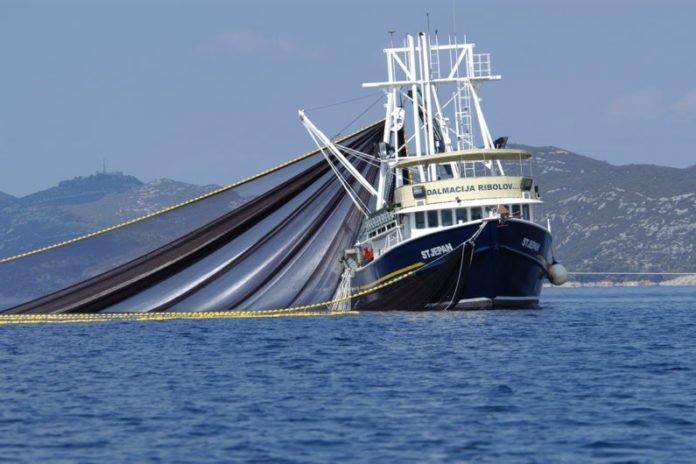 Fishing vessels like this one were tracked during a short-lived trawling moratorium in the Adriatic Sea as part of a Stanford study. (Image credit: Ulrich Karlowski 2008 / Marine Photobank)